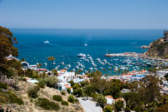 Catalina Harbor Stock Images