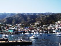 Catalina Harbour Image stock