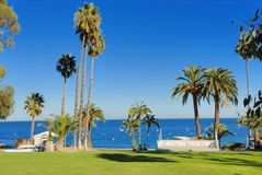 Catalina island. Gorgeous Catalina island in California Stock Image