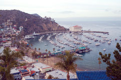 Catalina Island Royalty Free Stock Image