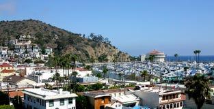 Catalina Island Harbor Arkivfoton