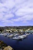 Catalina Island Harbor Stock Fotografie