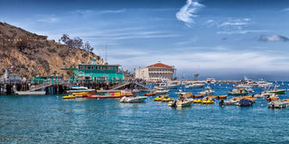 Catalina Island Harbour Royalty Free Stock Photography