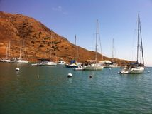 Catalina island Stock Image