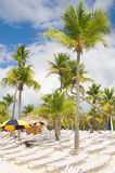 Catalina island - Playa de la isla Catalina - Caribbean tropical sea Royalty Free Stock Image