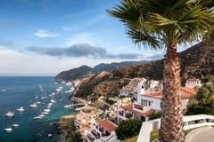 Catalina Island Resort and Avalon Bay. A hillside resort located near Avalon Bay on Catalina Island, California Royalty Free Stock Images
