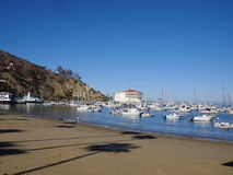 Catalina Island. Sunrise over the harbor on Catalina Island Royalty Free Stock Image