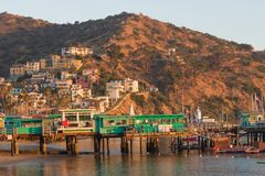 Catalina Island vacation resort, Avalon, California, green pleasure pier reflected in calm ocean, colorful houses perched on hills Royalty Free Stock Image