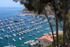 Catalina Island View Stock Images