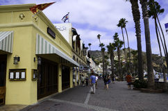 Catalina Island Royalty Free Stock Images