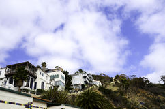 Catalina Island Stock Photography