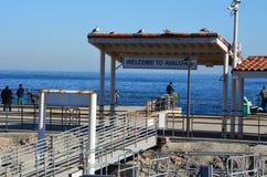 Catalina Island Welcome till Avalon Port royaltyfri bild