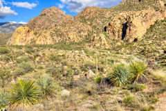 Catalina Mountains royalty-vrije stock foto's