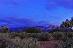 Catalina Mountains bedeckte im Schnee Stockfoto