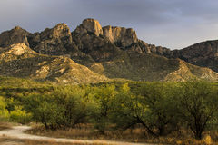 Catalina State Park, vivid colors Royalty Free Stock Images