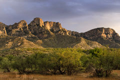 Catalina State Park, vivid colors Stock Photos