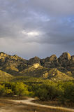 Catalina State Park, vivid colors Stock Images