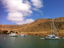 Catalina wyspa Fotografia Royalty Free