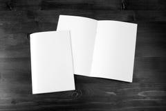 Catalogo in bianco, opuscolo, derisione del libro su fotografia stock libera da diritti