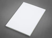 Catalogo in bianco, opuscolo, riviste fotografia stock libera da diritti
