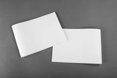 Catalogo in bianco, opuscolo, riviste, derisione del libro su immagini stock libere da diritti