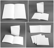 Catalogo in bianco, opuscolo, riviste, derisione del libro su fotografie stock