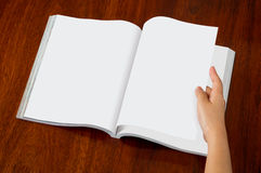 Catalogo in bianco, riviste, derisione del libro su immagine stock
