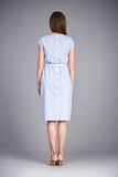 Catalogue des vêtements de mode pour les acces occasionnels de collection d'été de robe de coton en soie de partie de promenade d Photographie stock libre de droits