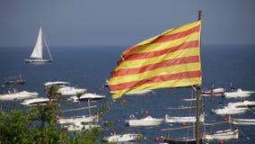 Catalonia flagga 03 arkivfilmer