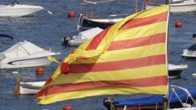 Catalonia flagga 02 stock video