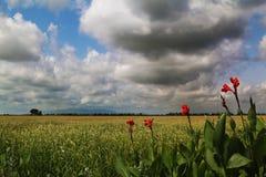 Catalonia, Hiszpania natura i krajobrazy, Europa podróż zaniki fotografia stock