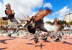 Catalonia Square in summer.  Barcelona, Spain Royalty Free Stock Image