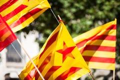 Catalonian flag Royalty Free Stock Photo