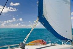 Catamarán bajo la vela Imagen de archivo libre de regalías