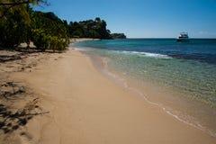 Catamarán de la playa de la revista de Grenada Imágenes de archivo libres de regalías