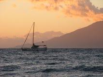 Catamarán de Maui Fotos de archivo libres de regalías