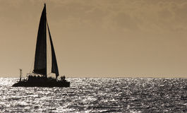 Catamarã Imagens de Stock Royalty Free