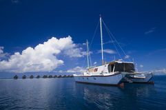 Catamaran Stock Images