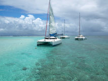 catamaran Royaltyfri Bild
