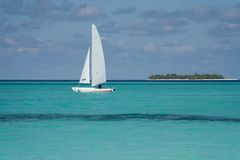 Catamaran Photo stock