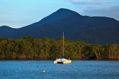 Catamaran amarré dans le port de cairns Images stock