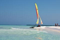 Catamaran on Beach. Catamaran resting on the beach in the Caribbean Royalty Free Stock Photo