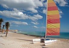 Catamaran Beach. A catamaran lies near palm trees on a beach Stock Photos