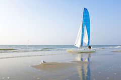Catamaran at the beach in the Netherlands. Catamaran at the beach from the north sea in the Netherlands Royalty Free Stock Photos