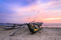 Catamaran on the beach during sunset, Negombo, Sri Royalty Free Stock Photo