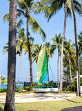 Catamaran on the beach with volleyball court Stock Images