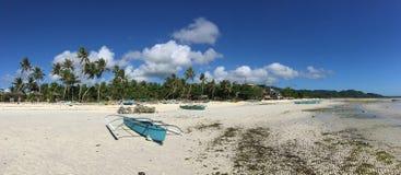 Catamaran Boats and palmtrees panorama Stock Photography