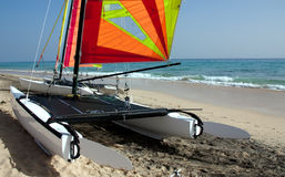 Catamaran de vague déferlante Photos libres de droits
