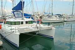Catamaran and docked boats Stock Photography