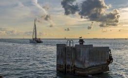 Catamaran, żegluje w kierunku horyzontu Zdjęcie Stock